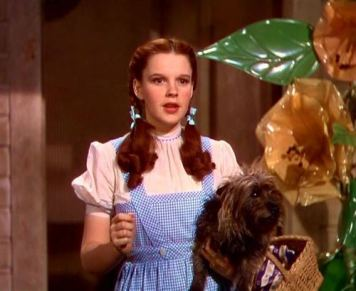 The-1930-s-the-wizard-of-oz-classic-movies-9239430-500-410